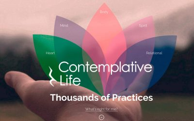 Contemplative Life: Meeting the Needs Created by the Religious/Spiritual Paradigm Shift