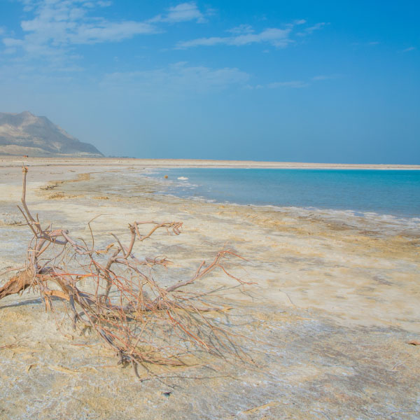 Dead Sea Holy Land Living Water
